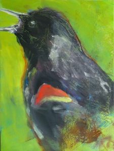 First Call | Red-winged Blackbird | 12
