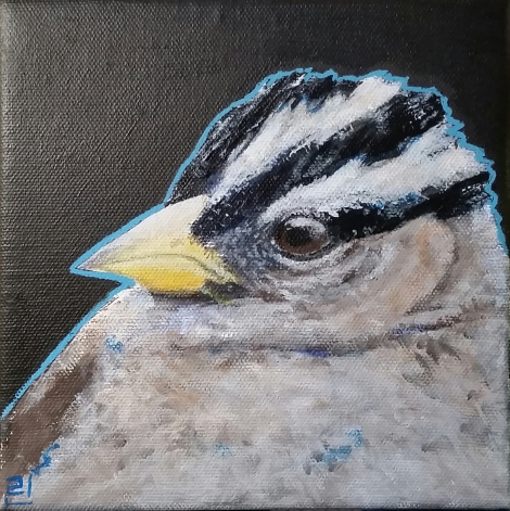 "White-crowned Sparrow | 6"" x 6"" Acrylic"